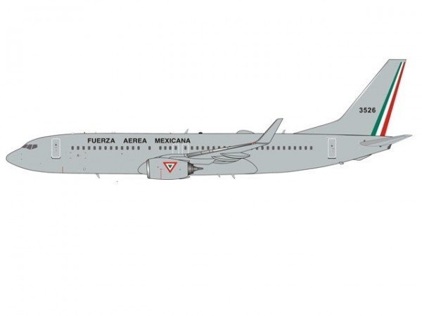 Boeing 737-800 Mexican Air Force